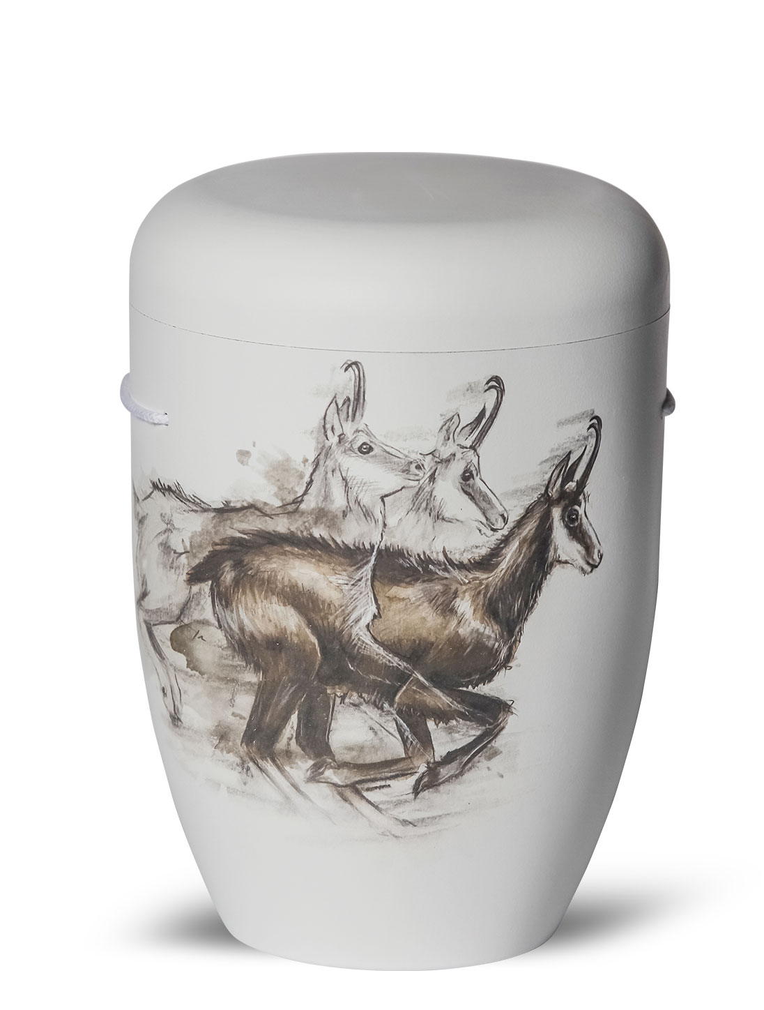 Do It Yourself Cremation Urns : Biodegradable cremation ashes funeral urn casket gams